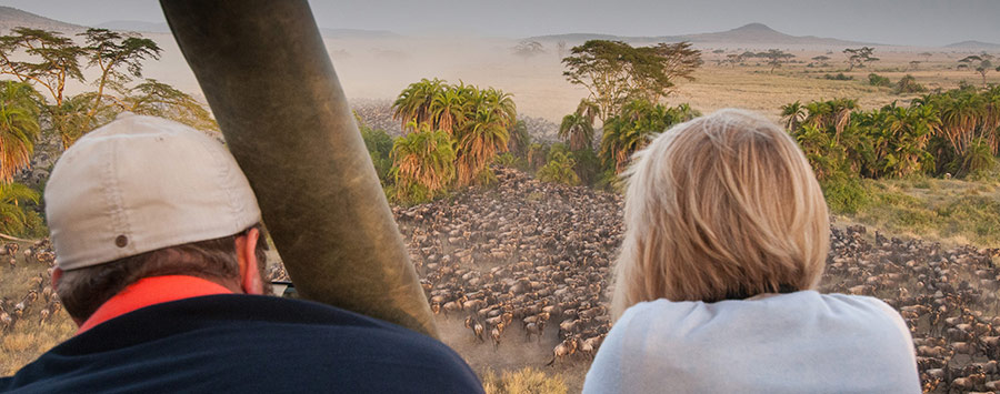 6 Day Migration Safari Serengeti Ngorongoro Crater