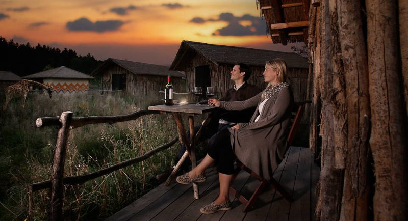 6 Day Ndutu migration Safaris