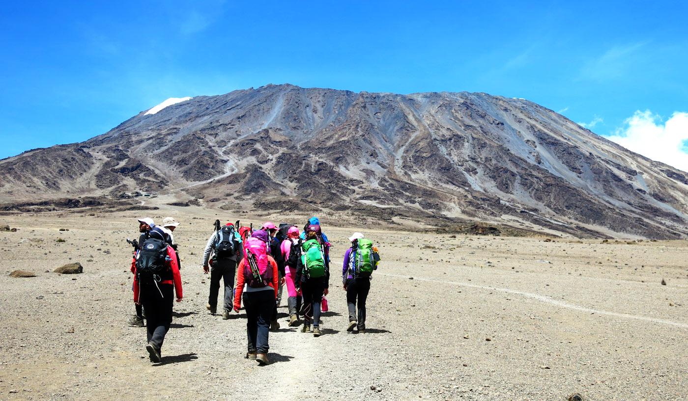 https://www.africajoytours.com/8-days-kilimanjaro-climbing-umbwe-route/