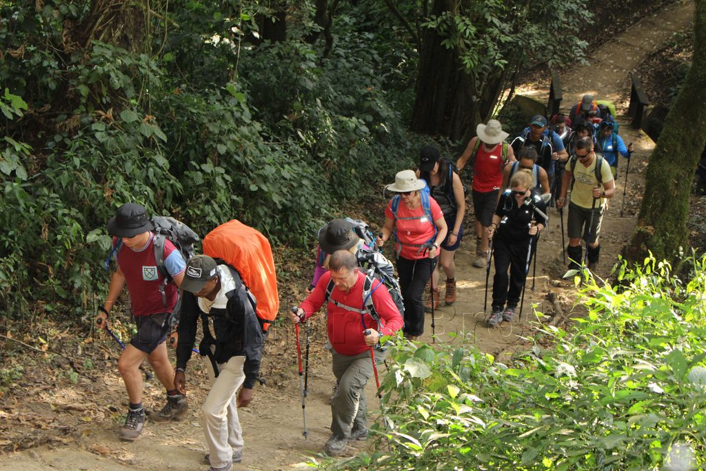 Group Join climb Kilimanjaro Safari