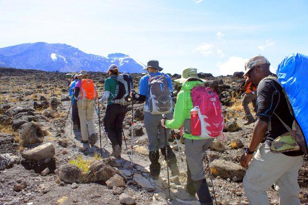 kilimanjaro climb lemosho